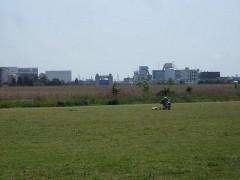 対岸に川崎河港水門が見える
