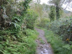 長沼への道は突然山道っぽく…