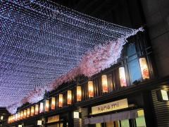 LEDで桜をモチーフにした回廊