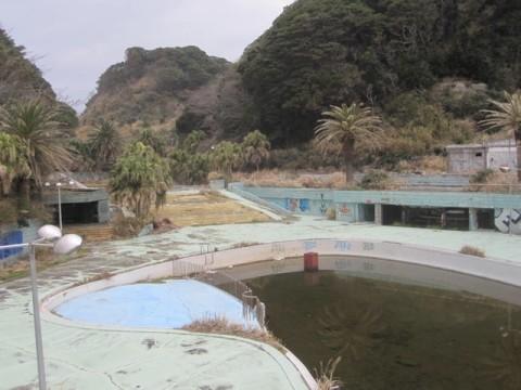 プール跡には引き続き水が溜まっていた