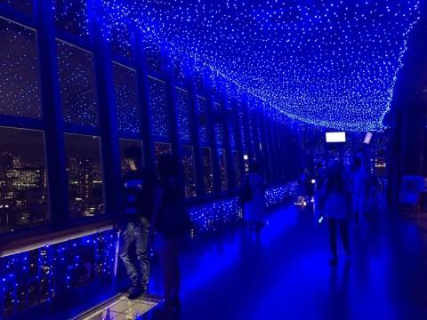 大展望台1階は青の世界