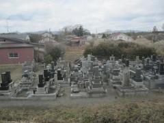 墓石は倒れたまま…
