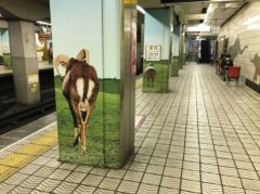 動物園前駅…なぜか動物のおしり