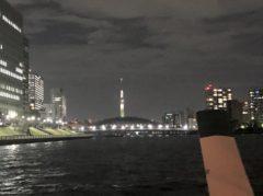 東京スカイツリーを遠くに見る