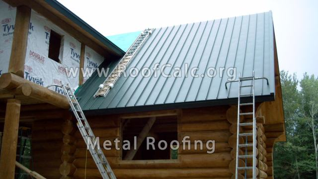 Ice Dam Metal Roof