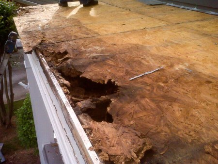 Flat Roof - Rotting Sheathing