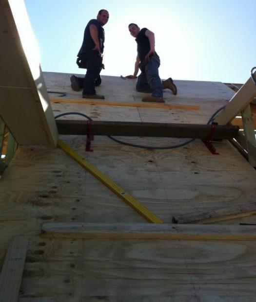 Asphalt roof shingles system