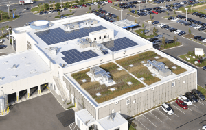 Honda Headquarters, Clermont, Fla., scored a 22 within RoofPoint for Tecta America and was recognized with a 2011 RoofPoint Excellence in Design Award, Honorable Mention for Excellence in Water Management.