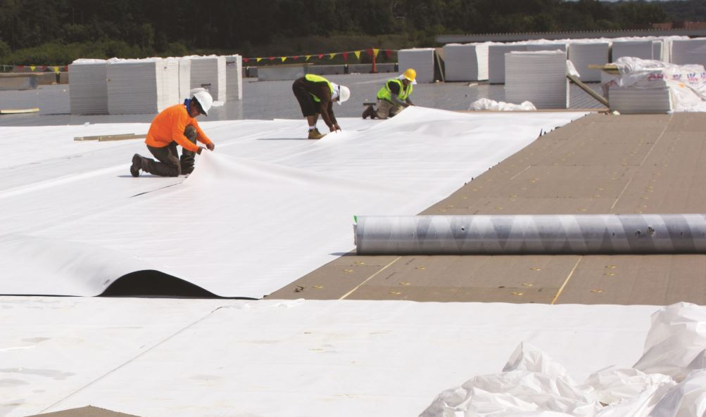 The TPO Roofing System Was Constructed Over A 22 Gauge Metal Fabricated Roof  Deck.