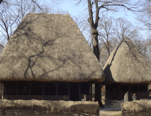 Photo 10. Houses from the Northern county of Maramureș feature thick thatch roofs. Village Museum, Bucharest. Photo: Ana-Maria Dabija.
