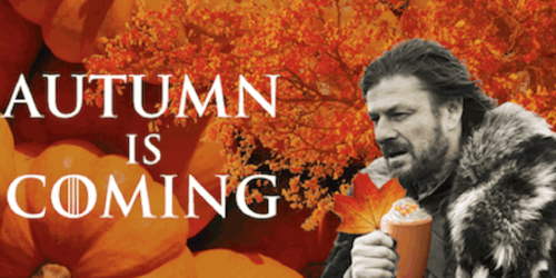 Image result for autumn is coming