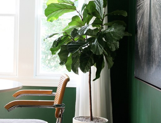 Roundup : Faux Plants & Greenery - roomfortuesday.com