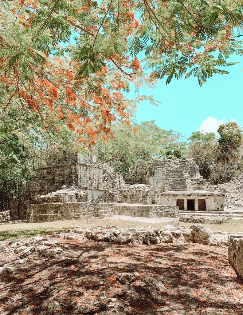 Visit Muyil Ruins Tulum