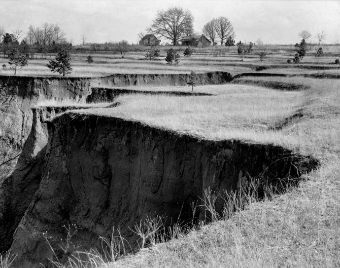 Erosion. Cotton was grown on this field until twenty five years ago. Note terraces. Chilton County, Alabama. 1937.