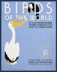 Birds of the World Book Cover