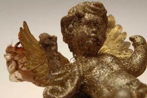 cicada on weeping angel