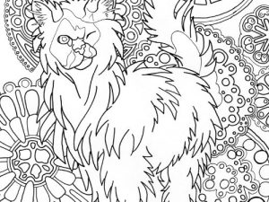 Himilayan Cat Coloring Page For Adults
