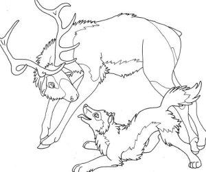elk wolf coloring page