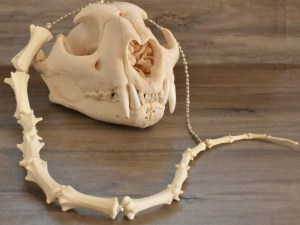 cougar tail bone necklace