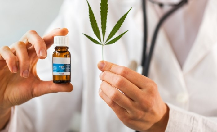 The Journey of CBD from Plant to Oil