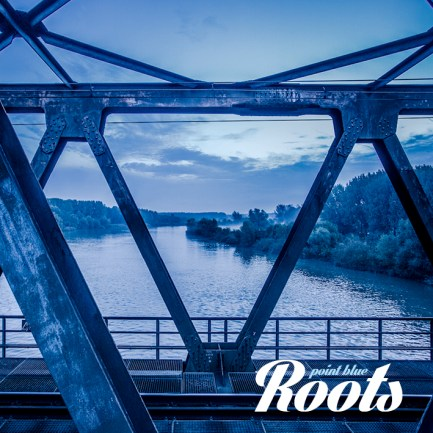 roots-cover-1