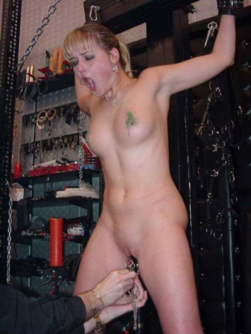 Hot Kinky Free Sex Stories Online