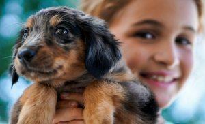 Fotografía de una niña con su perrito