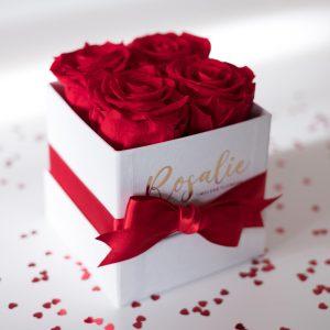scatola box quadrata con 4 rose rosse stabilizzate e fiocco rosso su tavolo bianco