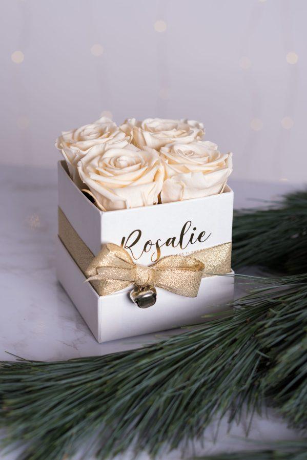 scatola quadrata bianca con 4 rose stabilizzate color panna accanto a ramo di pino verde
