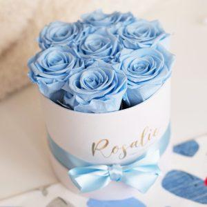 scatola tonda con 7 rose stabilizzate di color azzurro e nastro di raso azzurro attorno. Su tavolo bianco. Vista dall'alto.