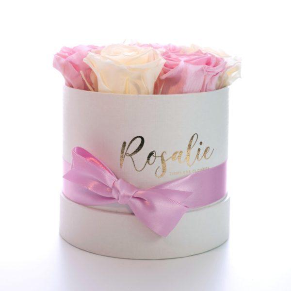 scatola tonda con rose stabilizzate di color rosa e panna con nastro rosa su sfondo bianco