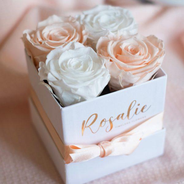 box scatola quadrata di 4 rose stabilizzate di cui due color porcellana e due color bianco con nastro abbinato su fondo di lana color porcellana