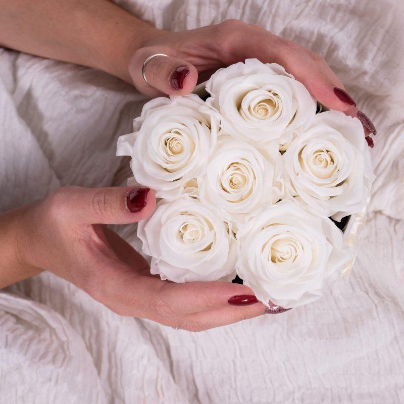 rose stabilizzate bianche in scatola tonda con mani femminili