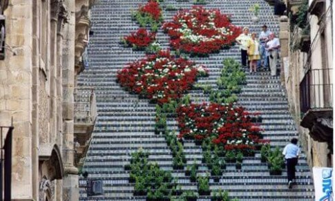 Stairway_to_Heavon_Flower_La_Scala_Sicily