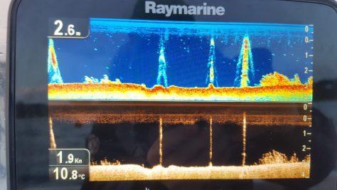 Raymarine Dragonfly 7 pro