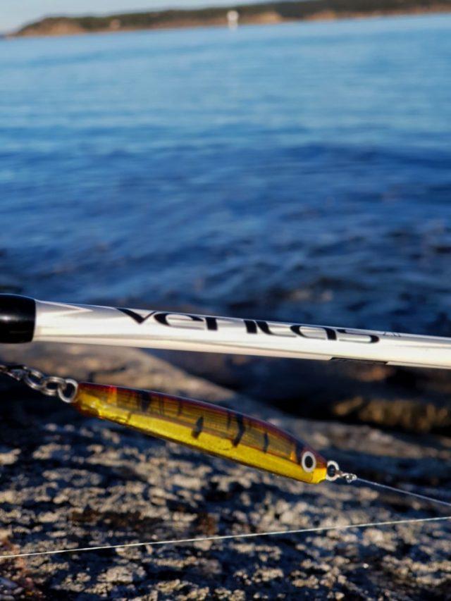 Det å fiske sjøørret om vinteren er utfordrende men meget spennende.