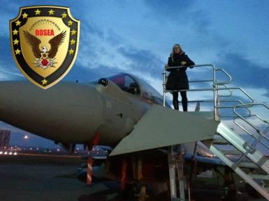 Rosalba avião logotipo rosea