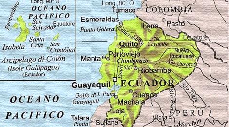 """«ROSEA & World AGORA'  Ecuador """" РОЗАЛЬБА СЕДЛО"""