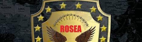 """ROSEA = LIBRO DA COMPRARE SCRITTO DA ROSALBA SELLA """"ROSEA, NO-PROFIT ORGANIZZATO A LIVELLO MONDIALE"""" = ロザルバ サドル"""