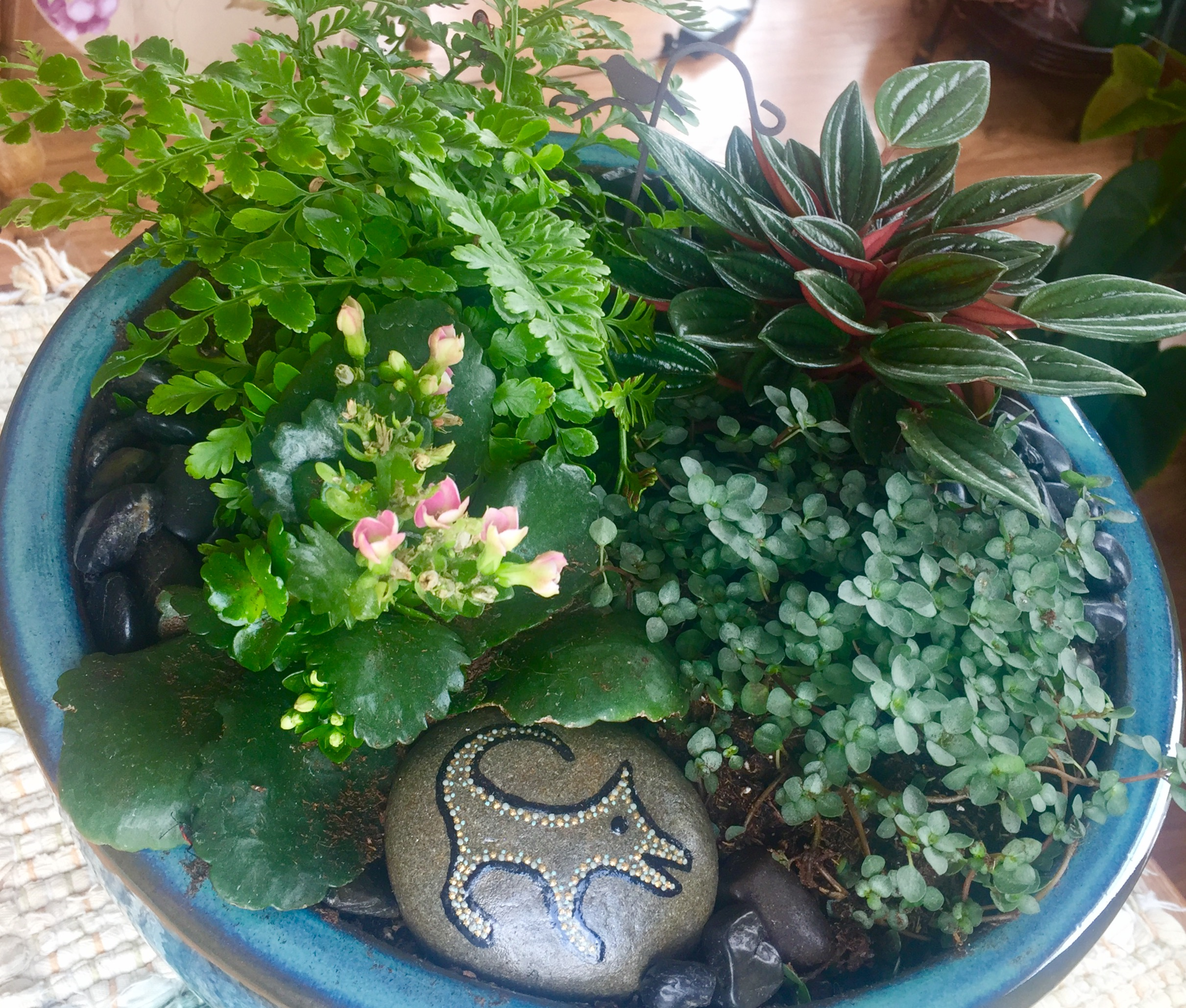 Here Are Some Cute Houseplants In Dish Gardens Accented With Stones, A Frog  And A Decorated Stone I Found At An Art Fair. (Unfortunately, I Donu0027t Have  The ...