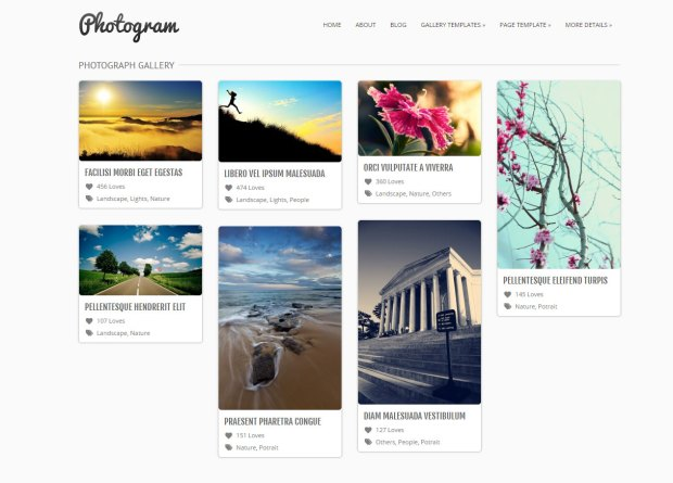 This is a sample of the Photogram theme gallery page.