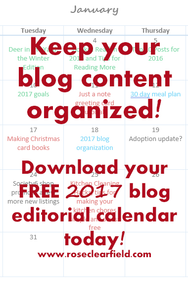 Keep your blog organized! Click through to get your FREE 2017 blog editorial calendar today!   http://www.roseclearfield.com