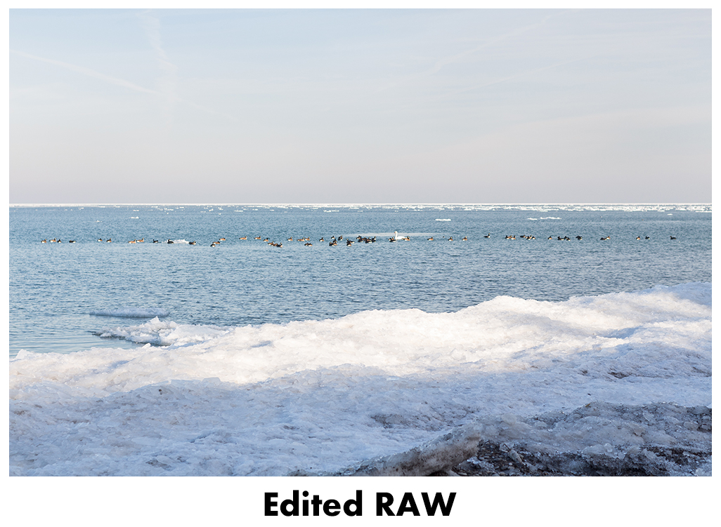 JPEG vs RAW - Edited RAW | http://www.roseclearfield.com