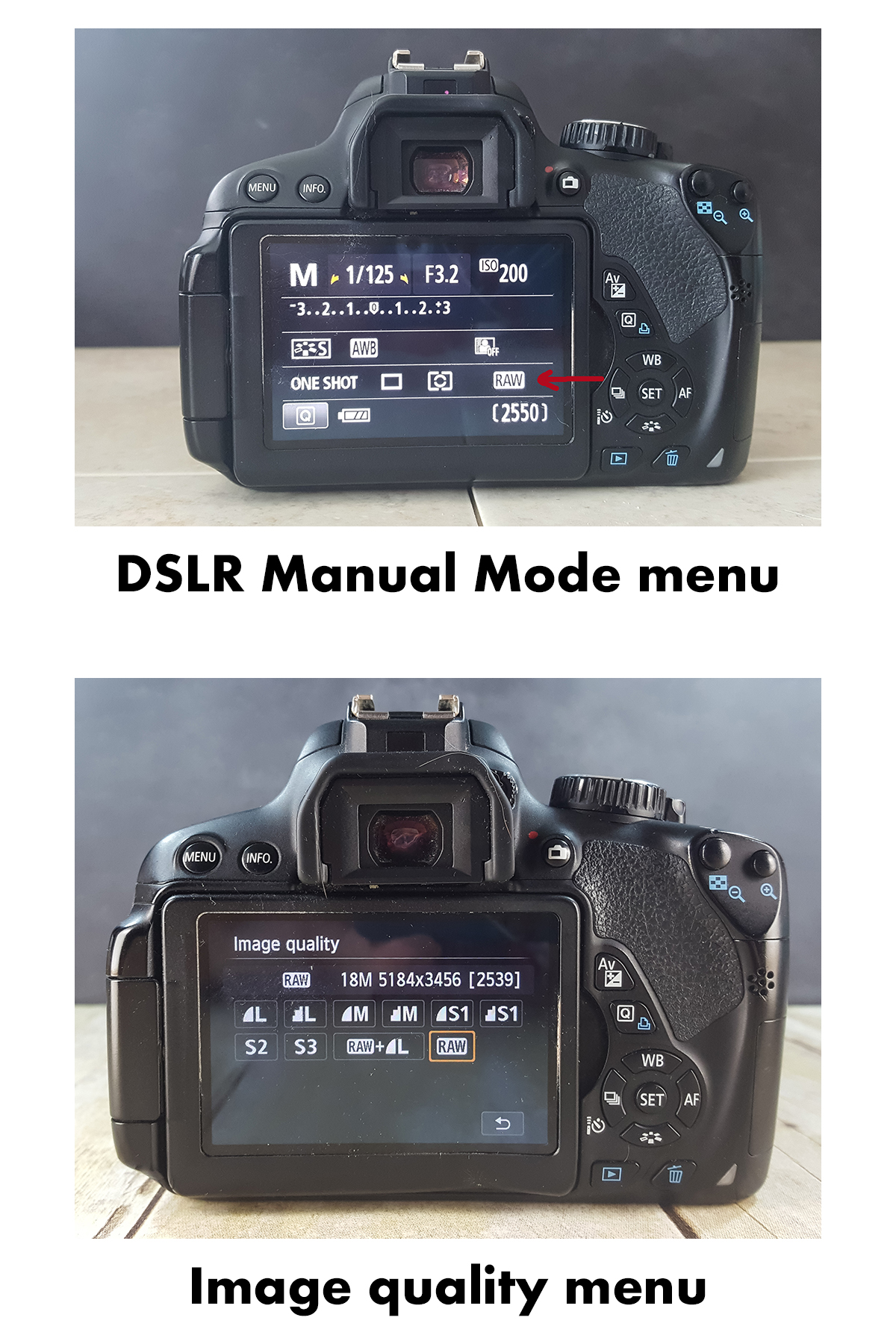 Shooting RAW DSLR Menus | http://www.roseclearfield.com