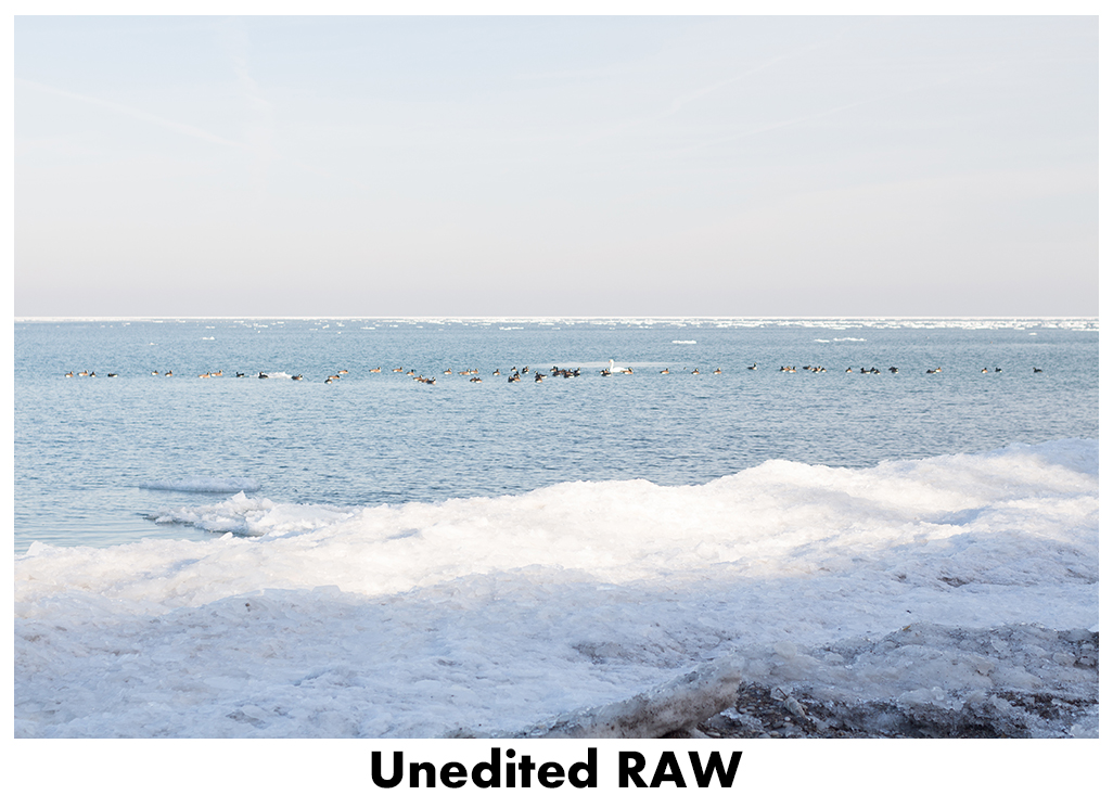 JPEG vs RAW - Unedited RAW | http://www.roseclearfield.com