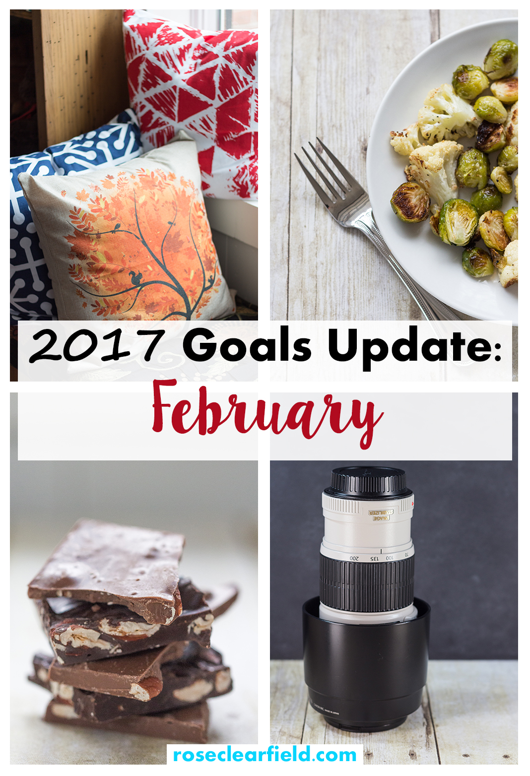 2017 Goals Update: February | http://www.roseclearfield.com