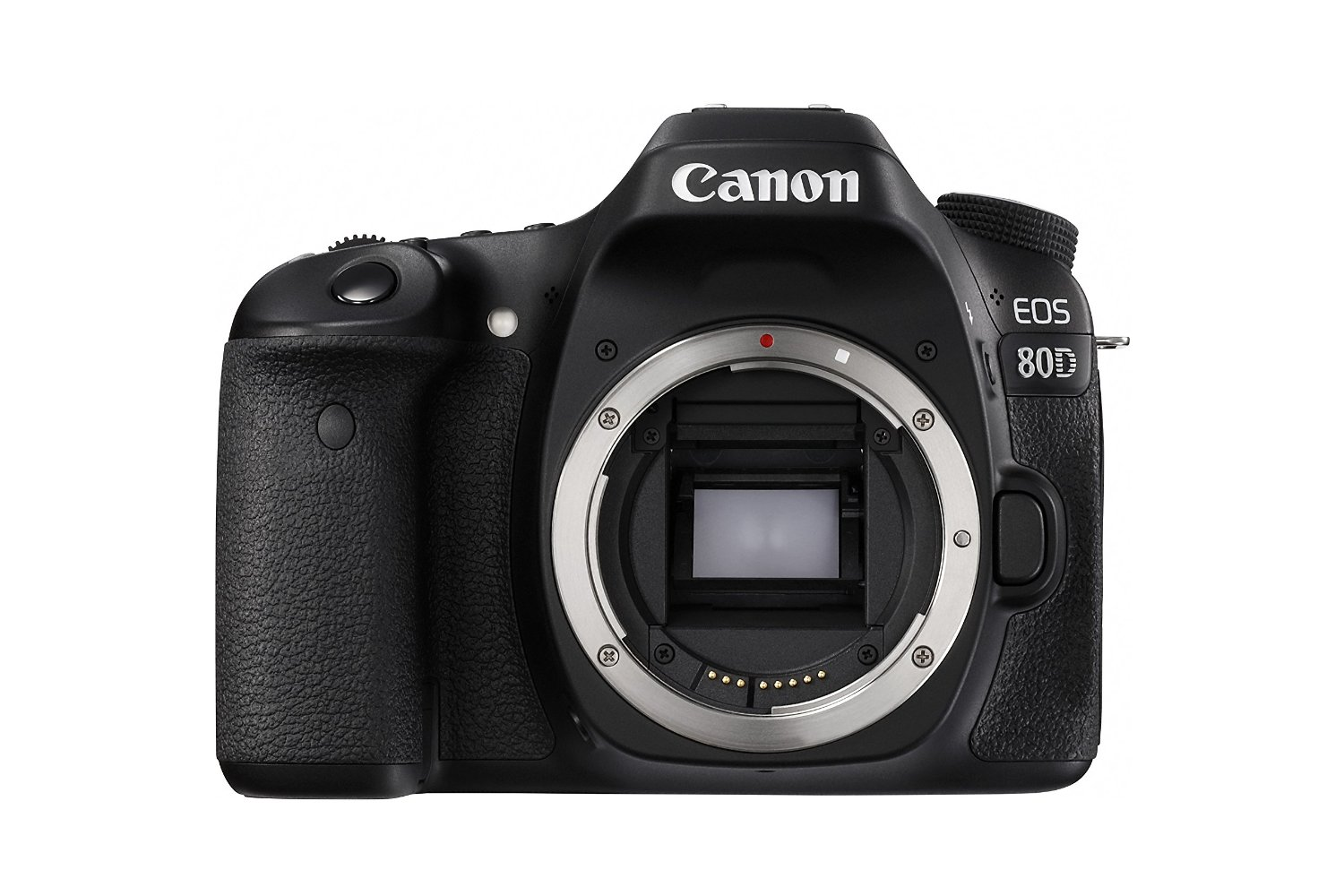 Canon 80D via Amazon | http://www.roseclearfield.com