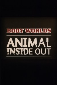 Body Worlds Animal Inside Out, Milwaukee County Zoo, May 6-September 4, 2017 | http://www.roseclearfield.com