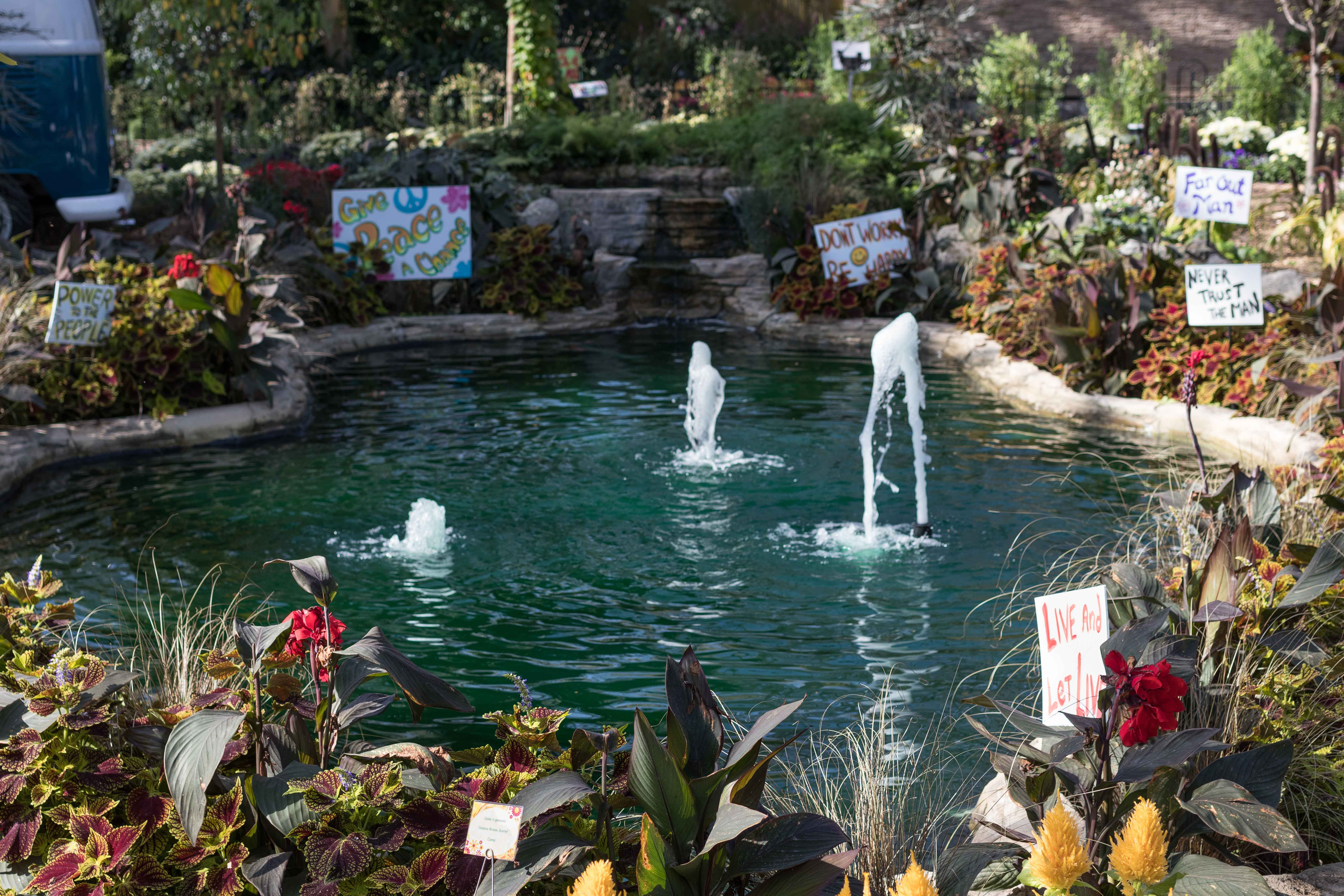 Mitchell Park Domes Flower Power Fall Floral Show | http://www.roseclearfield.com