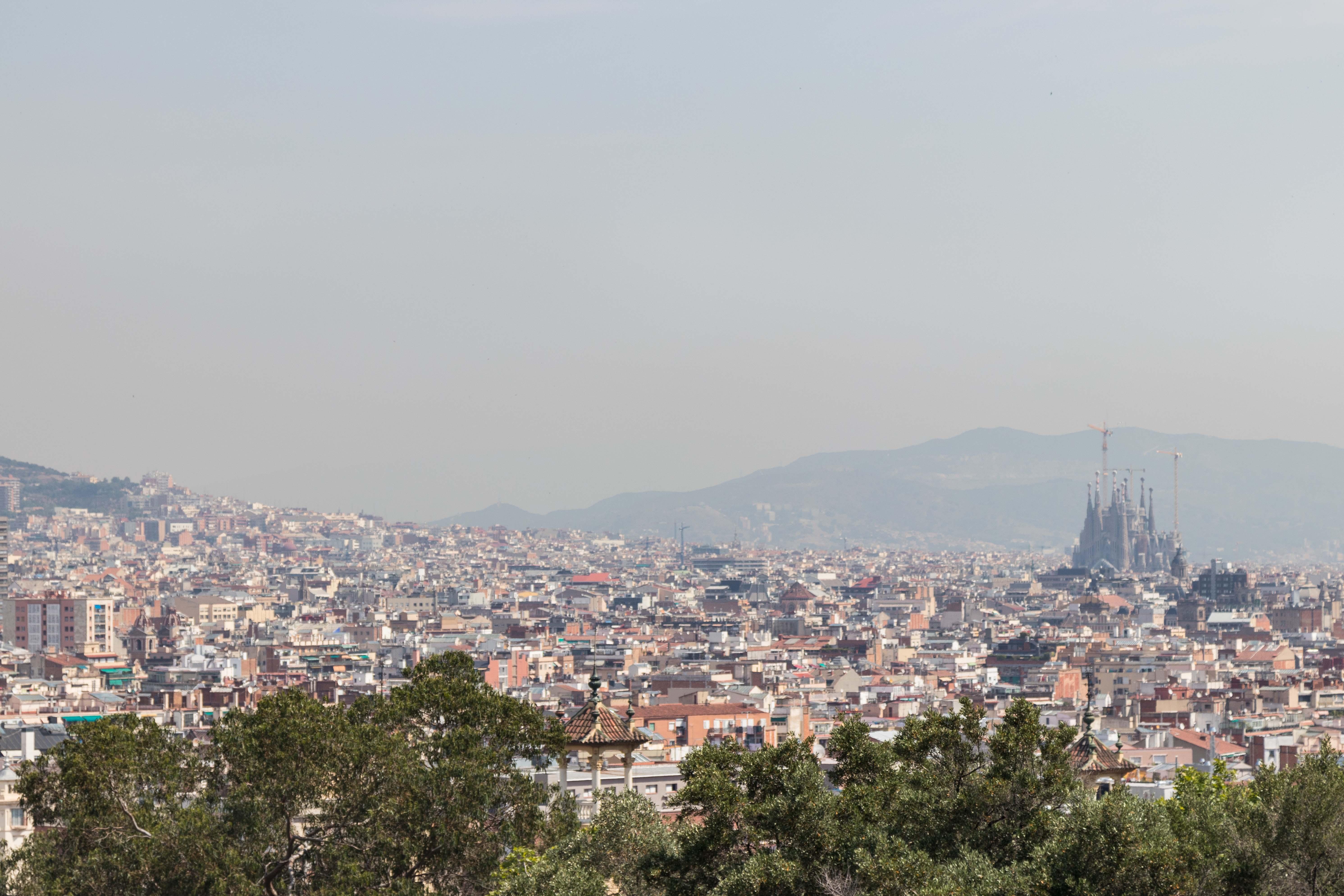 Barcelona Skyline | http://www.roseclearfield.com